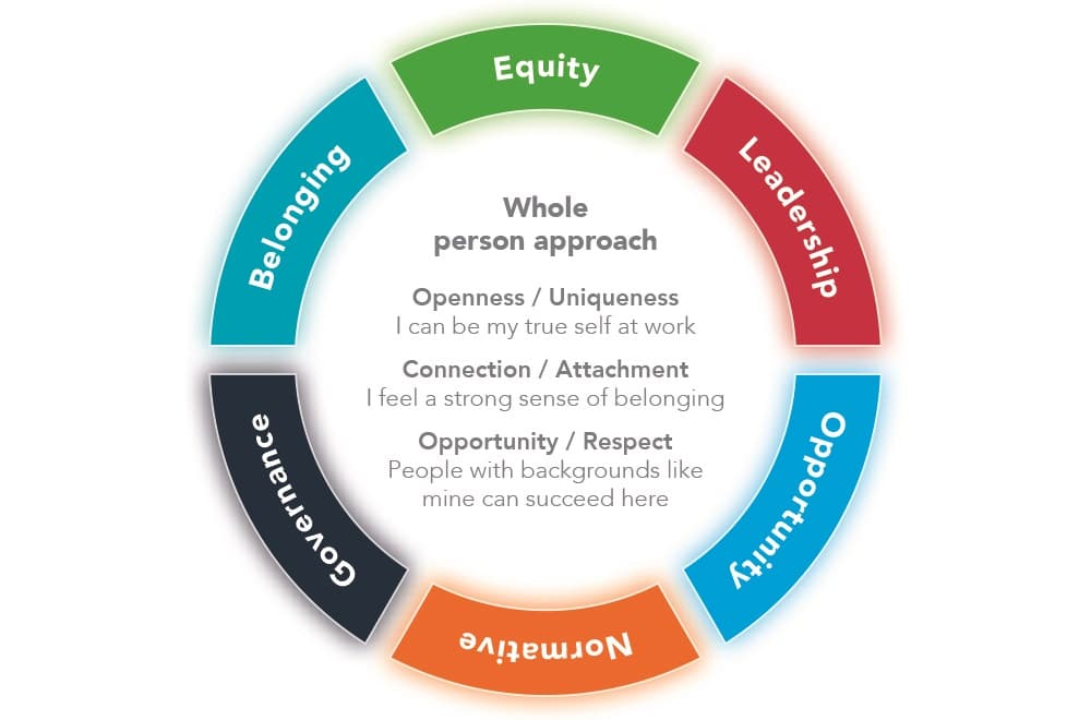 diversity and inclusion framework, People Insight
