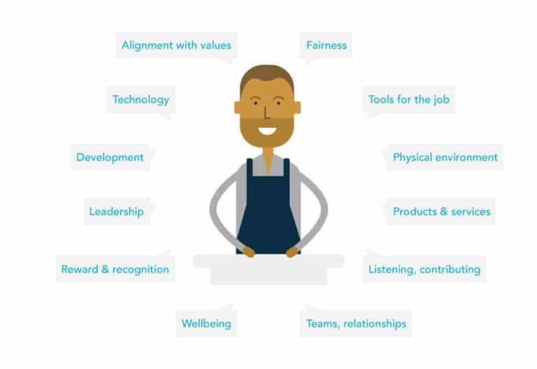 Employee Experience, People Insight