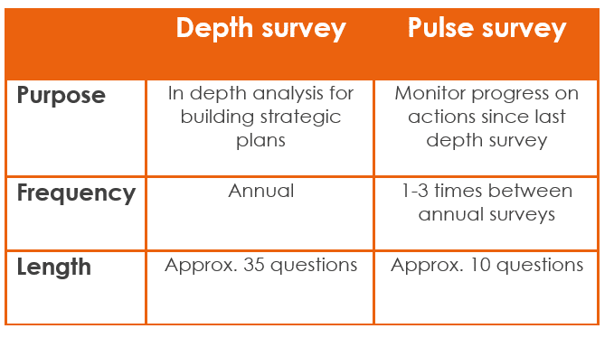 People Insight sorts out the difference between a Depth survey and a pulse survey.