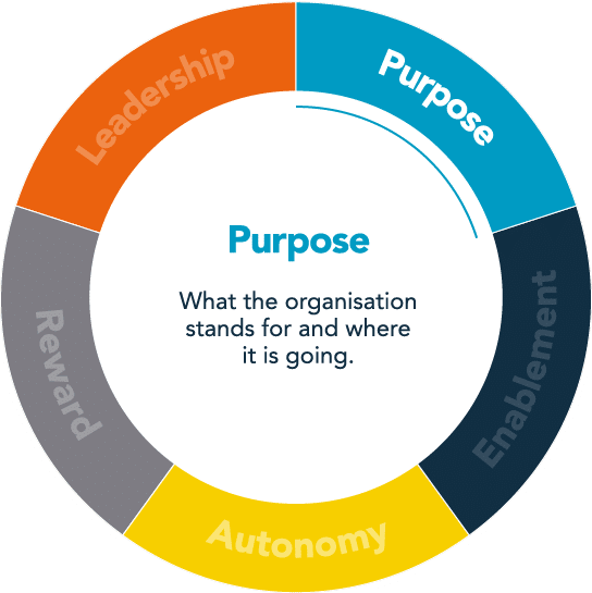 employee engagement model, People Insight
