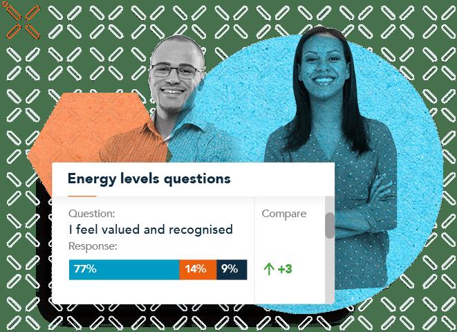 employee wellbeing surveys, People Insight